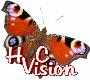 HVC-Vision