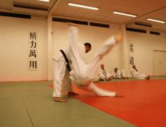 Judolessen in regio Den Bosch!