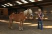 Paardencentrum PaardENziel en Zorgboerderij Hartenziel